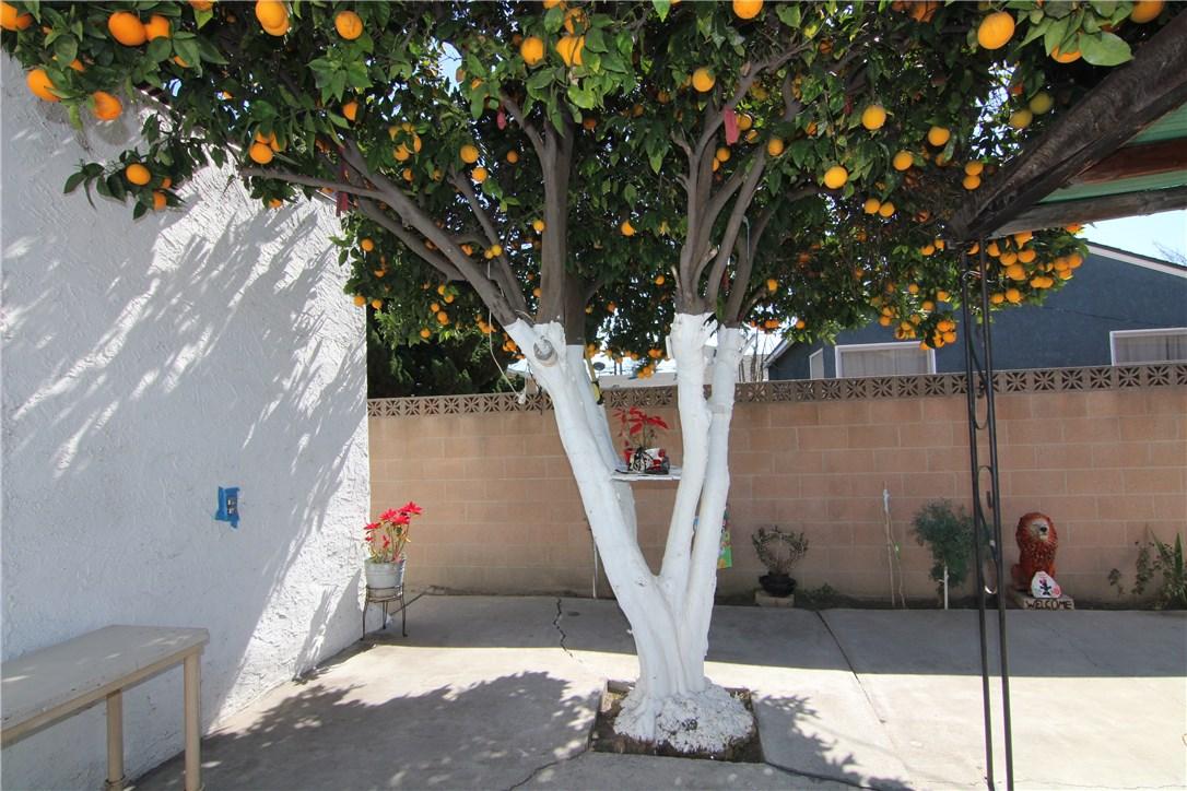5524 Myrtle Av, Long Beach, CA 90805 Photo 37