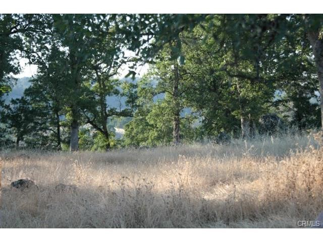 Additional photo for property listing at 0 Miocene Circle  Butte Valley, California 95965 United States
