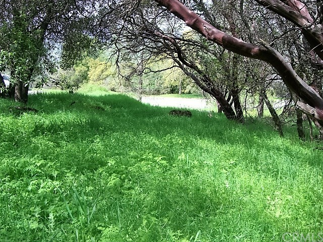 18605 Pine Flat Court, Hidden Valley Lake CA: http://media.crmls.org/medias/b34904fe-8711-49ef-94da-09fd3925f003.jpg