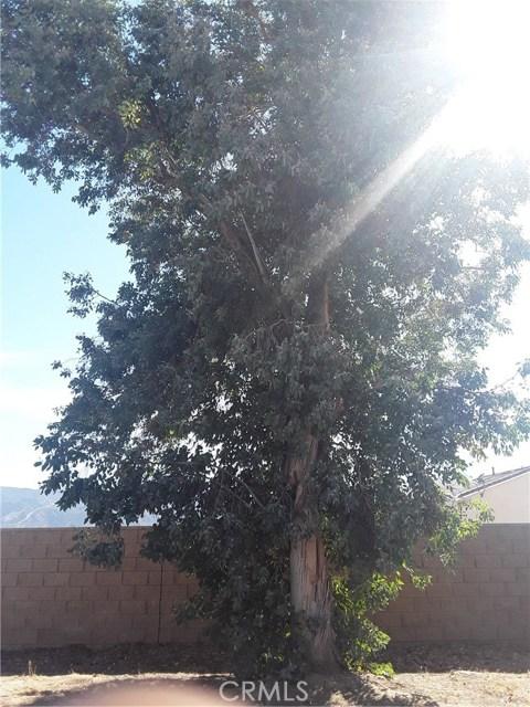 284 White Oak Road, Lake Elsinore CA: http://media.crmls.org/medias/b3832c89-2d7e-438b-9f05-fe3c9137c793.jpg