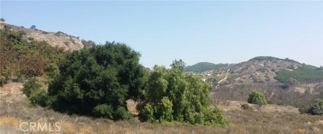0 Camino Estribo, Temecula, CA  Photo 10