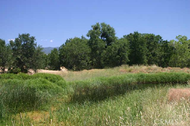 1200 Oak Park Way, Lakeport CA: http://media.crmls.org/medias/b4729972-3f65-4d4c-8a30-dcdb30567a34.jpg