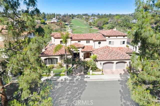 8 Canyon Fairway Drive Newport Beach, CA 92660