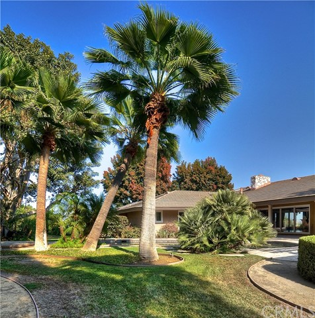1411 Miramar Drive, Fullerton CA: http://media.crmls.org/medias/b4fc7815-ad9b-4612-a14a-9a30691eb567.jpg
