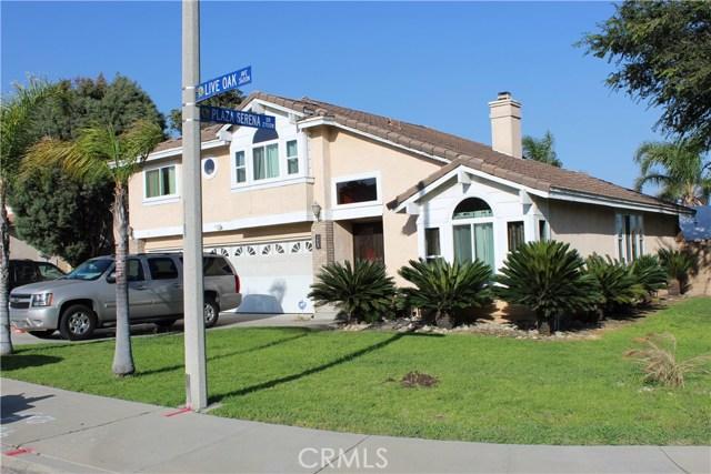 3669 N Live Oak Avenue, Rialto CA: http://media.crmls.org/medias/b58a24b7-f446-46b3-85ce-66de5ddb3396.jpg