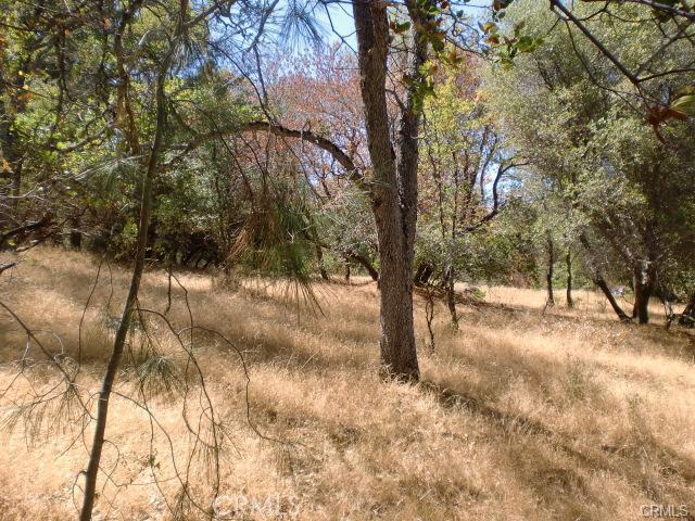 0 Apache Ranch Road Ahwahnee, CA 93601 - MLS #: FR18119932
