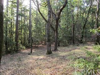 0 Big Basin Way, Outside Area (Inside Ca) CA: http://media.crmls.org/medias/b72f9828-c129-4197-a6e4-3cd3d23c61f0.jpg