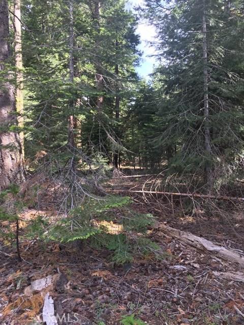 土地,用地 为 销售 在 Humboldt Road Butte Meadows, 加利福尼亚州 95942 美国