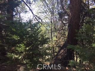 0 Old Toll Road, Lake Arrowhead CA: http://media.crmls.org/medias/b82489b1-3db1-4266-afe3-34393c92c257.jpg