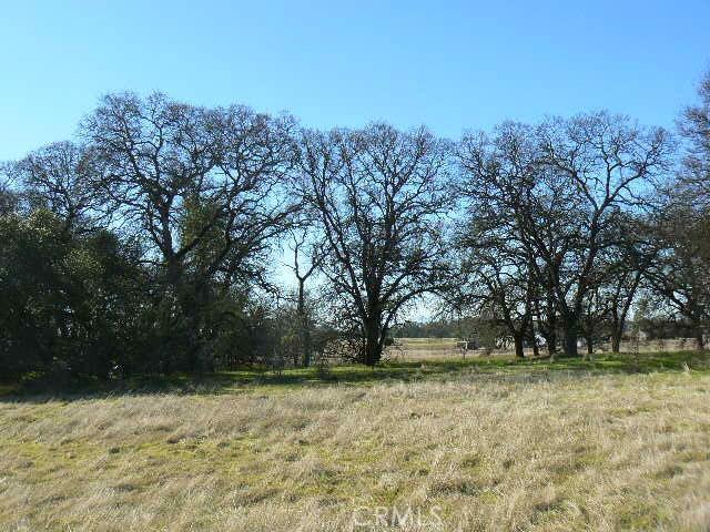 0 Cox Lane, Oroville CA: http://media.crmls.org/medias/b8bb5825-518f-4f17-b207-624c9cd4471e.jpg