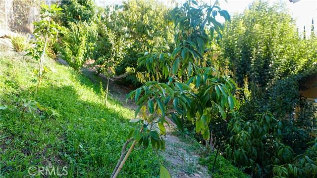 354 Camino De Teodoro, Walnut CA: http://media.crmls.org/medias/b8e4dfdf-d9ec-43fd-b16f-439ca34e5b54.jpg