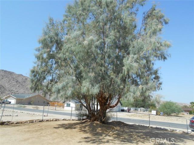 6941 Alpine Avenue, 29 Palms CA: http://media.crmls.org/medias/b91cb53f-a3c0-4c36-9963-fe67b6b70b1c.jpg