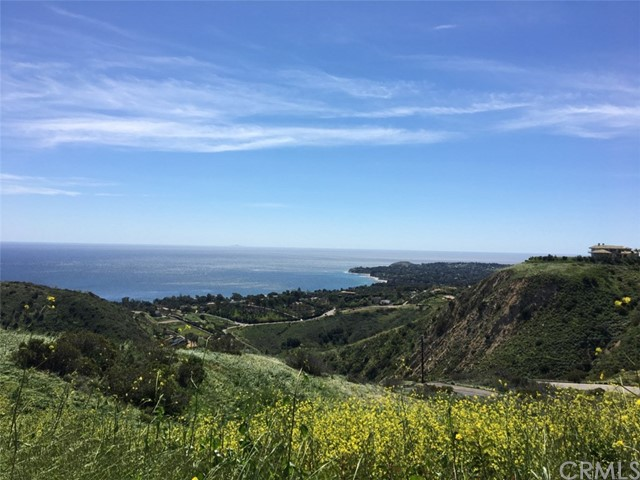 0 Little Sycamore Canyon Rd Malibu, CA 90265 - MLS #: CV17139483