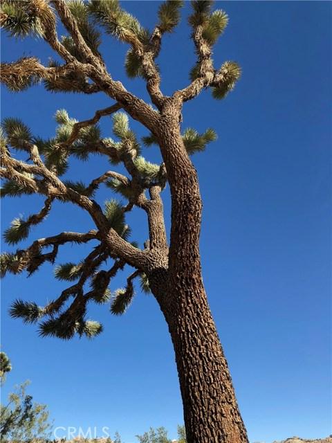 0 El Paseo 29 Palms, CA 92277 - MLS #: JT18082930