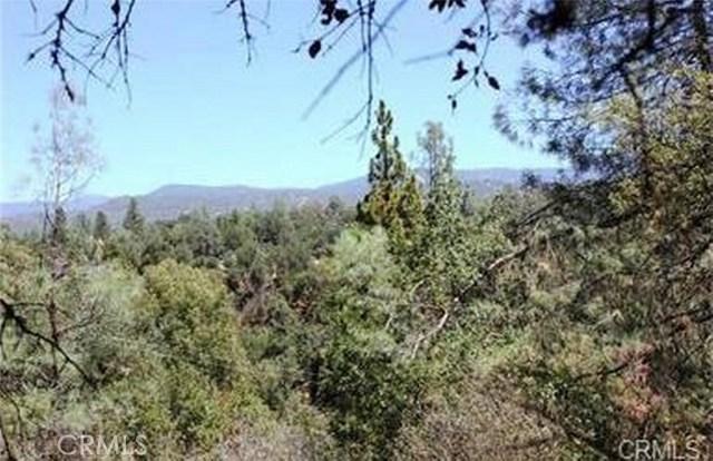 3.31 AC Meadowwood Road, Oakhurst, CA, 93644