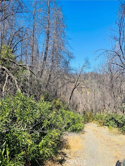 12657 Elk Mountain Road, Upper Lake CA: http://media.crmls.org/medias/bc5a18d1-384e-4b18-a7a2-5e758594cff7.jpg