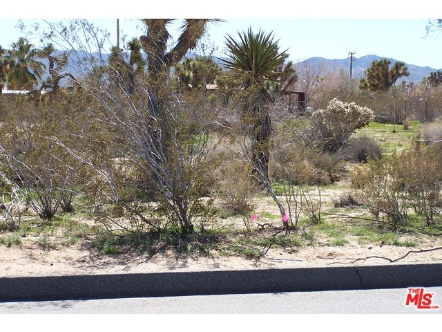 Photo of home for sale at 0 BUENA VISTA Drive, Yucca Valley CA