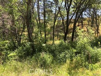10028 Creek View Drive Cobb, CA 95426 - MLS #: LC17242107
