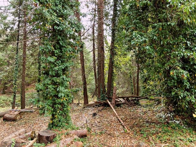 13647 Nimshew Road, Magalia CA: http://media.crmls.org/medias/bca829ee-66b3-4bce-8f2d-b59388094aa8.jpg