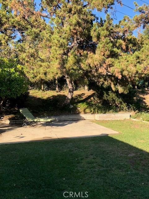 247 Hillgreen Place, Arcadia CA: http://media.crmls.org/medias/bd4da533-8d8b-4387-803a-7872d141d87b.jpg