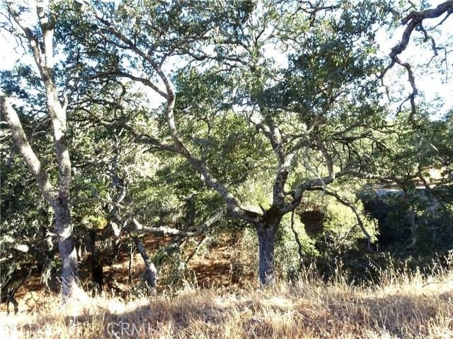 10945 Vista Road, Atascadero CA: http://media.crmls.org/medias/bd66be15-0adf-4aac-9538-aa2a5259a78e.jpg