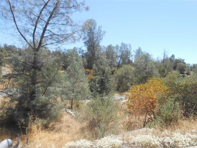 Lot 857 Deep Forest Drive, Coarsegold, CA, 93614