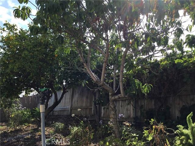 15324 Manzanares Road, La Mirada CA: http://media.crmls.org/medias/bde37f3d-bcbb-4d9d-a0c6-568c45910ce4.jpg
