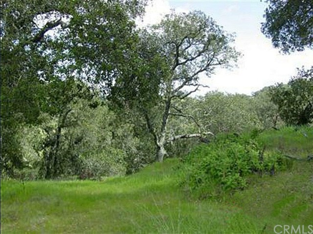 0 San Miguel Road, Atascadero CA: http://media.crmls.org/medias/bdfdaca8-0f8a-488f-bd47-71a40c38f231.jpg