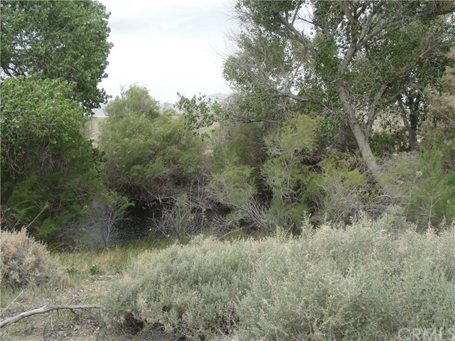 32009 Rabbit Springs Road Lucerne Valley, CA 92356 - MLS #: CV17095720