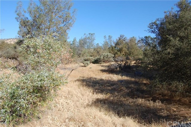 0 Deep Forest Drive, Coarsegold CA: http://media.crmls.org/medias/be2d2fea-ab4c-42f3-a0b8-74d50c03fcd0.jpg