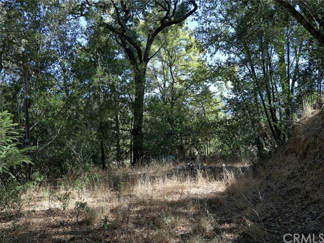 1845 Clover Valley Rd, Upper Lake, CA, 95485