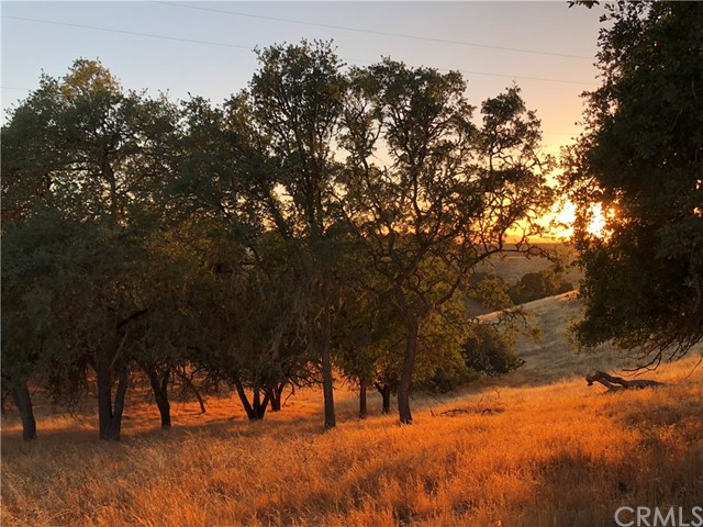 7830 Blue Moon Road, Paso Robles CA: http://media.crmls.org/medias/bf45eb96-a853-4ca6-92b5-11aed13b04cb.jpg