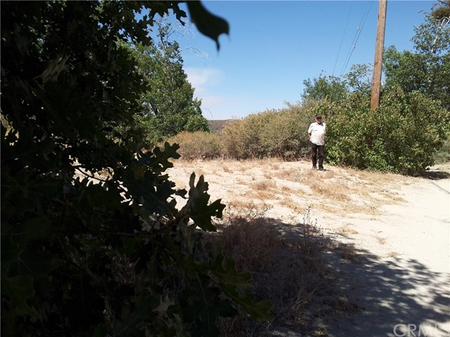 Additional photo for property listing at 736 Cypress Road  Cedar Glen, California 92321 United States