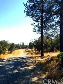 5887 Vineyard Lane, Mariposa CA: http://media.crmls.org/medias/c045d9d7-5d6e-4843-a0f0-fb2e49836c26.jpg