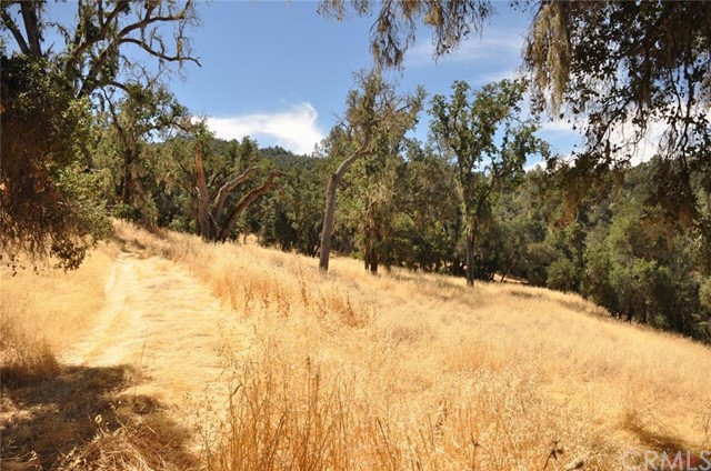 Land for Sale at 11 Tres Vista Place Paso Robles, California 93446 United States