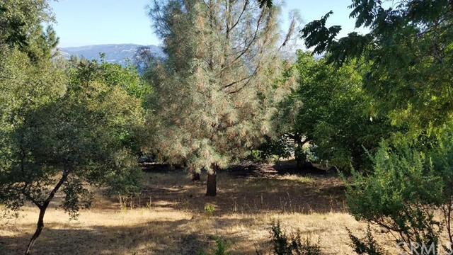10012 Point Lakeview Rd, Kelseyville, CA, 95451