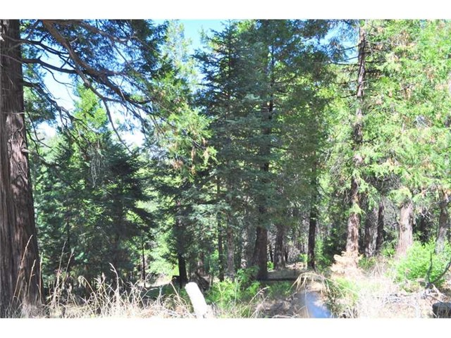 Additional photo for property listing at 0 Mojave View Drive Cedarpines Park, California United States