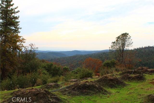 土地,用地 为 销售 在 Pine Tree Lane Berry Creek, 加利福尼亚州 95916 美国