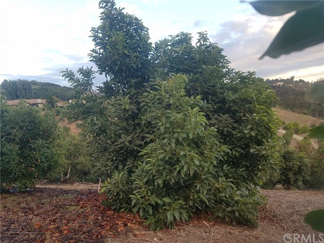 0 Sandia Creek Dr, Temecula, CA  Photo 26