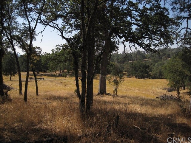 0 Phoenix Loop Coarsegold, CA 93614 - MLS #: FR18012263