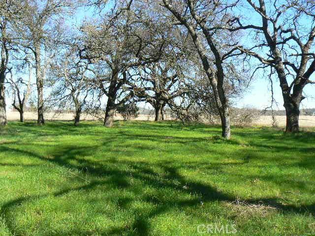 0 Cox Lane, Oroville CA: http://media.crmls.org/medias/c2cca792-855a-4676-b56c-6896cabc64d8.jpg