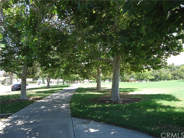 1595 Fullerton Drive, San Bernardino CA: http://media.crmls.org/medias/c2f6b634-99e0-4d5c-89c4-41eac7567694.jpg
