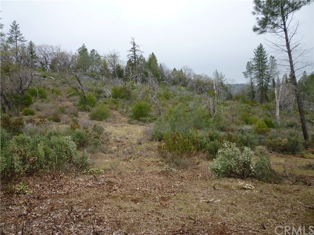 0 Stone Mountain #3 Road Oroville, CA 95965 - MLS #: PA18070144
