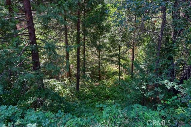 0 Dogwood Creek Drive Bass Lake, CA 93604 - MLS #: FR18205438