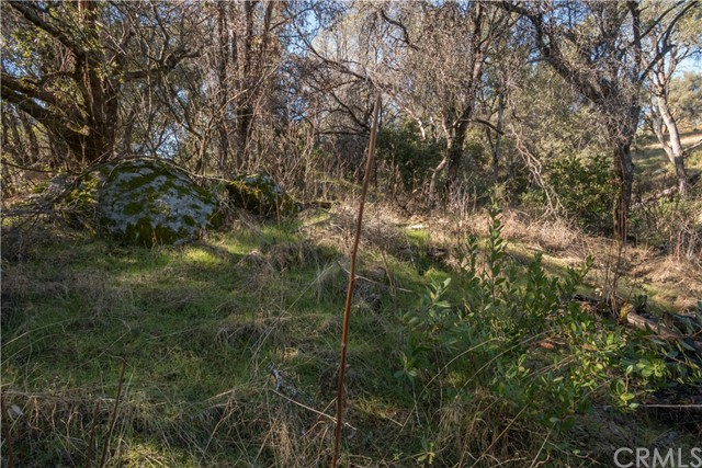 4907 Stumpfield Mountain Road, Mariposa CA: http://media.crmls.org/medias/c40f9f1c-9923-4e22-9d7c-6a1f4ed1fc1d.jpg