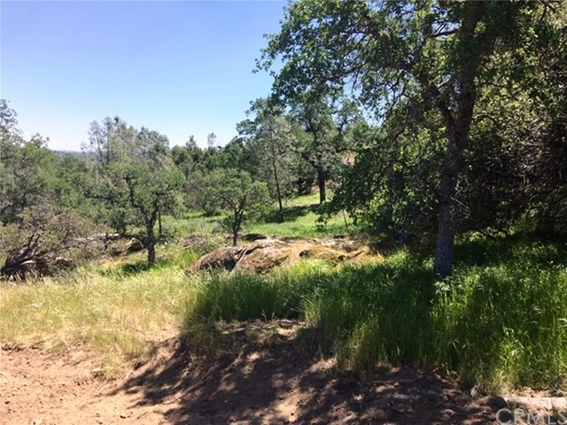 Lot 895 John Muir Court, Coarsegold, CA, 93614