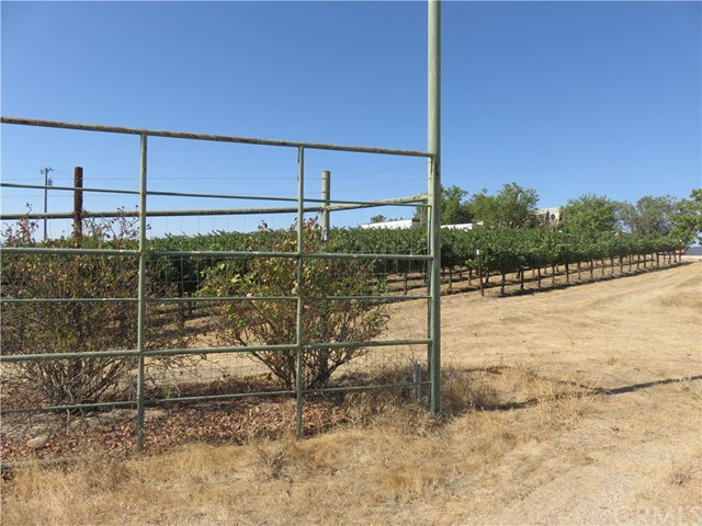 5805 Vista Serrano Paso Robles, CA 93446 - MLS #: NS17218716
