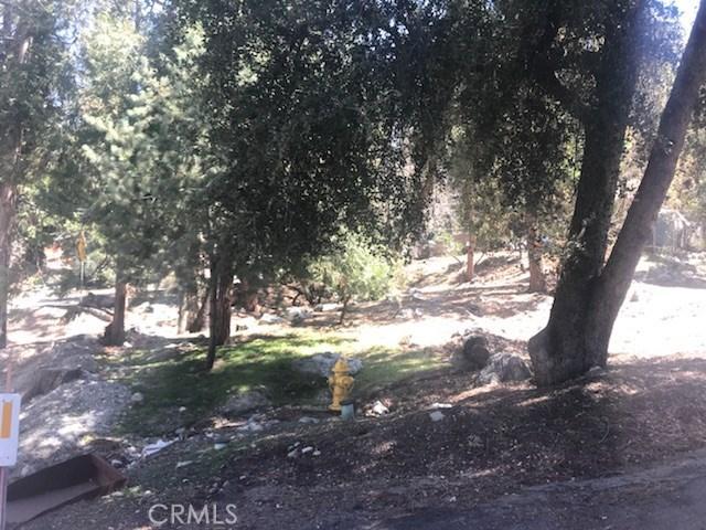 0 Canyon, Forest Falls CA: http://media.crmls.org/medias/c50f52b4-1fbd-4496-b346-8c397e22cded.jpg