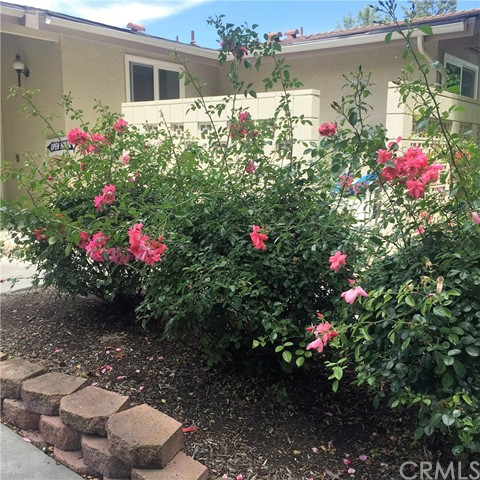 798 Via Los Altos Street Unit F Laguna Woods, CA 92637 - MLS #: OC17111595