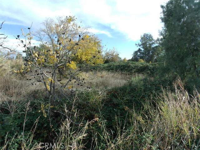 0 Highway 99, Orland CA: http://media.crmls.org/medias/c57ae03f-f4a9-4c28-9aa6-02b3ff14a54f.jpg